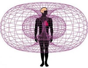 Champ électromagnétique du coeur